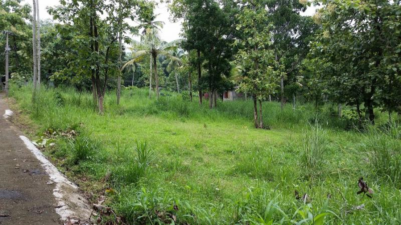 plot of land kerala