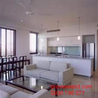 Apartment in district 1 for rent Hcmc