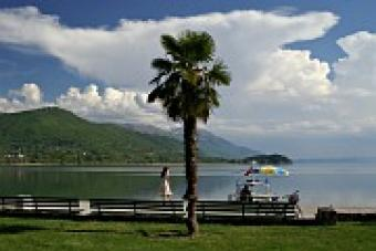 Villa, Apartments, Studio, Rent Ohrid