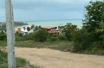Magnificient Plot near the Beach Tabatinga, Jacuma, Paraiba