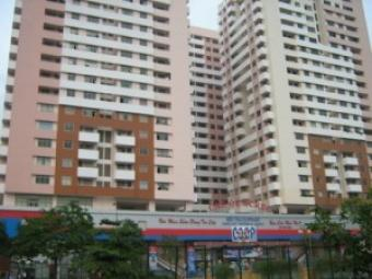 Furnished apt, Screc Tower Truong Dinh St,dist 3,hcm City