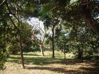 LAND FOR SALE Natal South Coast