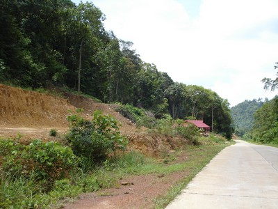 Roadside Land Plot Ko Lanta Yai