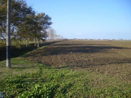 19000sq.m.land for investment North Durres Bay