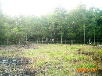 LAND to SELL in Phu Quoc Island Phu Quoc Island
