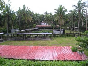 PHILIPPINES: CATTLE FARM FOR SAL Batangas