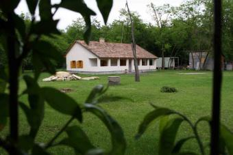 RANCH FOR SALE Budapest - 50km