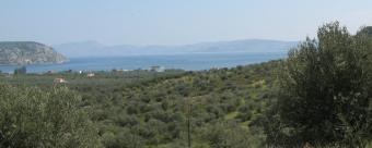 Greek Villa For Sale Ermioni