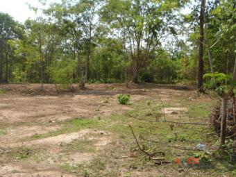 land for sell Vientiane