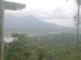 2.50 acre scenic land for sale Wayanad