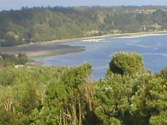 Land for Sale, South of Ch Puerto Montt