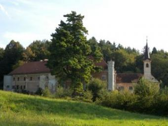 SALE! The old castle in Slovenia Savinja Valley