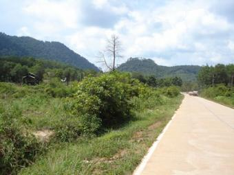 Flat Roadside Land Plot Ko Lanta Yai