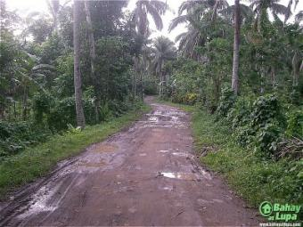 Batangas Lot for SALE Batangas