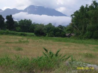 Overlooking lot for Sale Dumaguete