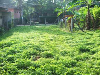 Gampaha city Limit - Bare Land f Gampaha