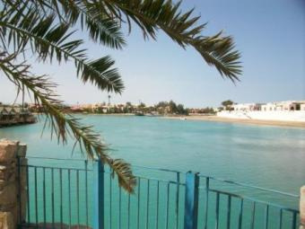 Apartments and Villas for Rent El Gouna
