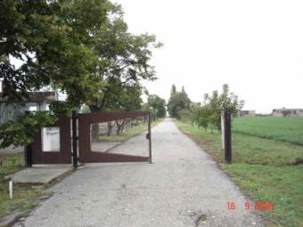 Industrial property for sale Jama Vojvodina