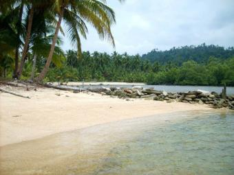Very large cheap beach Pt Barton San Vicente Palawan