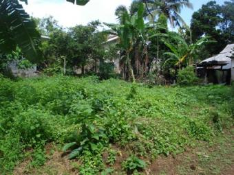 10P LAND FOR SALE NEAR KOTTAWA Kottawa