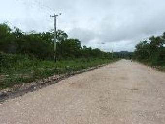 # 2041 - 50 ACRES LAND - San Ign San Ignacio