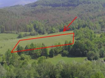 Potential Land in Carpathian Lucha Village