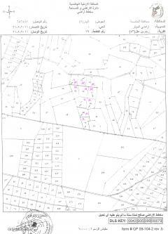 land want to rent Amman