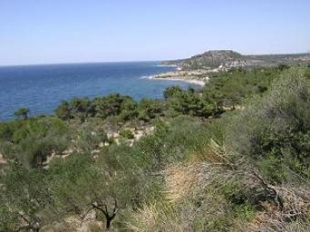 Investment Land For Sale Assos