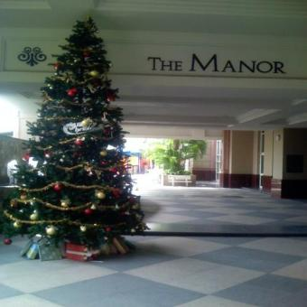 The Manor luxury flat for rent Hcmc