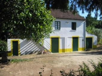 House with garden in Portugal Oliveira Do Hospital