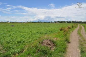 lot in tanza,cavite Cavite