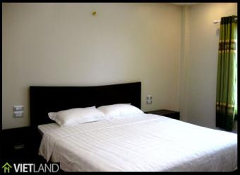 1 bed serviced apart for rent Hanoi