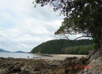 beachfront land plot for sell or Krabi