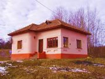 Country house& 2 hectars of land Runcu