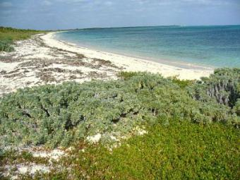 New!  Beachfront Lots For Sale Cockburn Town