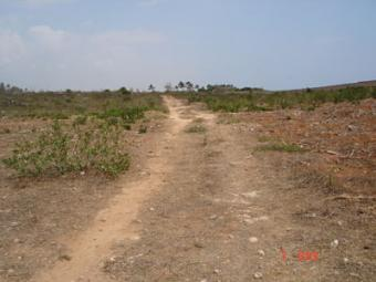 BEACH PLOT 52 ACRES Bofa,kilifi,mombasa