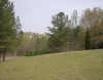 North Georgia 3.09 wooded acres Atlanta/cartersville