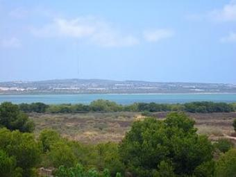 lovely apartment close golf Torrevieja