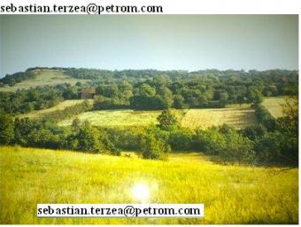 land for sale +old house & barn Arad County