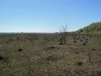 Agricultural land in Russia Nizhniy Novgorod