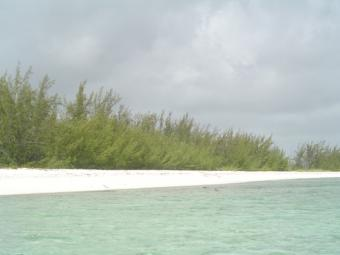 2 acres Beach front Lot! Providenciales