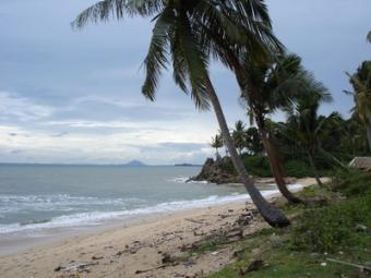 Prime Beach Front Land Ko Lanta Yai