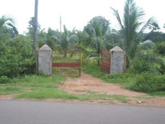 Prime Lands in Srikakulam Vizag Vizianagaram