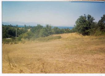 Property on sale Ohrid