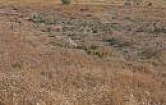 Athurugiriya 10p bare land for s Athurugiriya