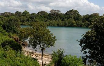 3 acres kwale Fungu fuel Area Nyali