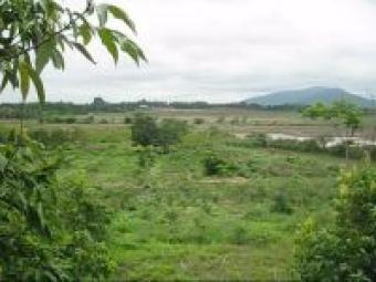 Exclusive 8.5 acre real estate Ban Mai Chiangrai