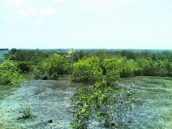 Ungasan Hills Land-kuta south Denpasar