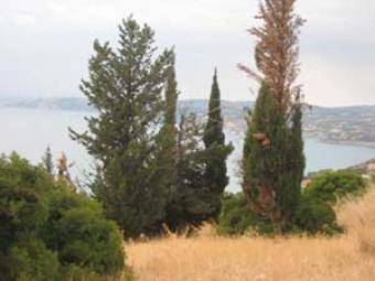 Land for Sale Kefalonia Kefalonia