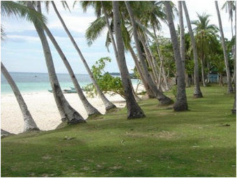 Beach And Lot for Sale (Phil.) Mandaue City, Cebu